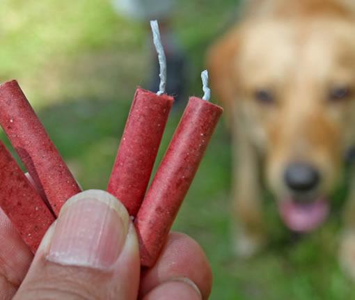 Honden vuurwerk pakket