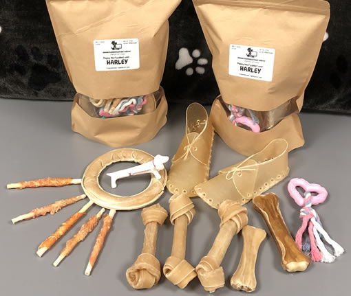 Puppy pakket teefje