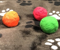 Kley ball puppy