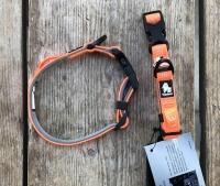 Kleine halsband oranje
